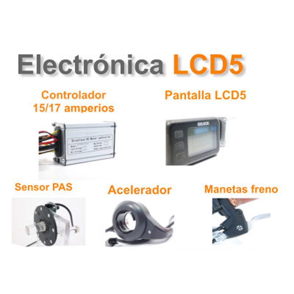 Kit Eléctrico Ciclotek Platinium LCD5 Bateria FT 36V 9A electronica